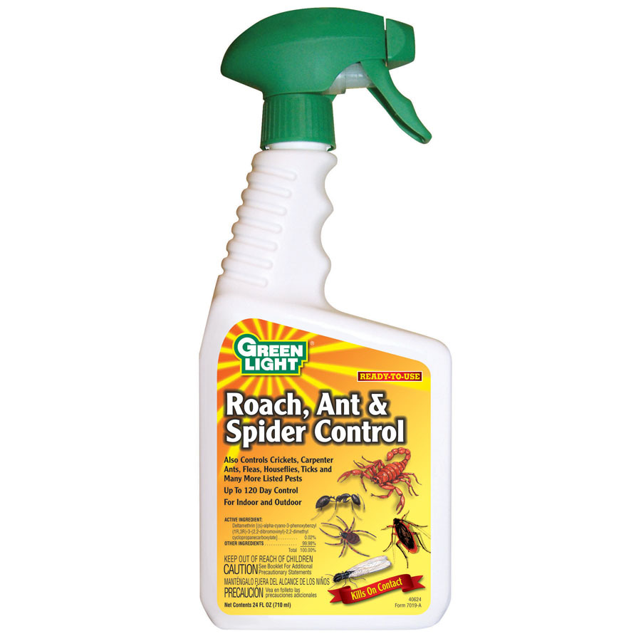Ant Control Lowes Ant Control