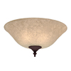 Hunter 2-Light Multicolor Ceiling Fan Light Kit with Amber Scavo Glass or Shade