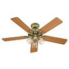 Hunter The Sontera 52-in Hunter Bright Brass Downrod or Flush Mount Ceiling Fan with Light Kit and Remote