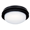 Hunter 2-Light Textured Black Ceiling Fan Light Kit with White Plastic Shade