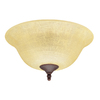 Hunter 2-Light Multicolor Ceiling Fan Light Kit with Amber Linen Glass or Shade