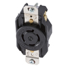 Hubbell 20 Amp 125/250-Volt Black 4-Wire Grounding Connector