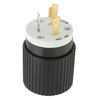 Hubbell 20 Amp 125-Volt Black and White 3-Wire Plug