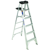 Werner 6-ft Aluminum 300-lb Type IA Step Ladder