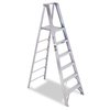 Werner 6-ft Aluminum Platform Ladder