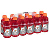 Gatorade 12-Pack 20-fl oz Fruit Punch Sports Drink