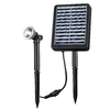 Kenroy Home Black Solar-Powered LED Spotlight