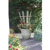 California Home & Garden 20-in W x 48-in H Brown Stain Traditional Garden Trellis