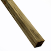 Severe Weather #2 Pressure Treated Lumber (Common: 4 x 4 x 8; Actual: 3.5-in x 3.5-in x 96-in)