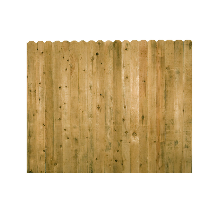 Shop Spruce Dog Ear Wood Fence Panel Common 6 Ft X 8 Ft