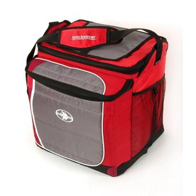 California Innovations 2.70 lbs Personal Cooler