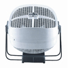 Seabreeze 10-in 2-Speed Oscillation Fan