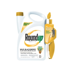 Roundup 170.24-oz Wild Blackberry Plus Vine and Brush Killer Wand