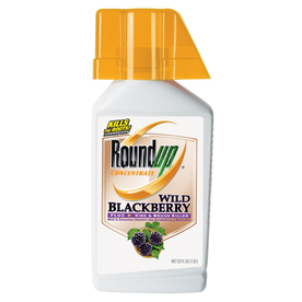 Roundup 32 Oz. Concentrate Wild Blackberry Plus Vine and Brush Killer