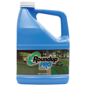 Roundup Pro Herbicide Grass and Weed Killer Concentrate