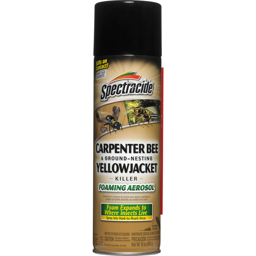 Yellow jacket killer lowes, find bed bugs mattress