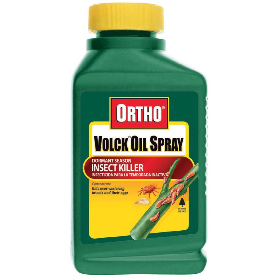 shop ortho 16 oz volck oil spray dormant season insect killer concentrate at. Black Bedroom Furniture Sets. Home Design Ideas