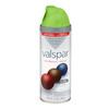 Valspar Everglade Glen Indoor/Outdoor Spray Paint