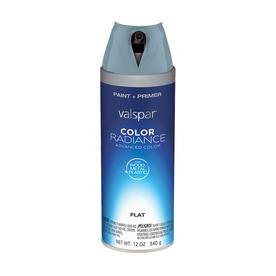 Valspar Silver Fox Indoor/Outdoor Spray Paint