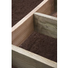 Top Choice #2 Rough Cedar Lumber (Common: 2 x 8 x 12-ft; Actual: 1-3/4-In x 7-3/4-In x 12-ft)