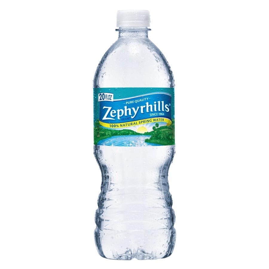 Shop Zephyrhills 28-Pack 20-fl oz Spring Water at Lowes.com