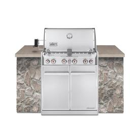 Weber Summit 4-Burner Silver Built-In Gas Grill Liquid Propane