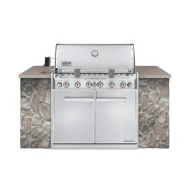 Weber Summit 6-Burner Silver Built-In Gas Grill Natural Gas or Convertible to NG