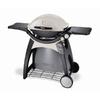 Weber Q Series Titanium 21700 BTU Portable Gas Grill