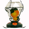Birdscapes Decorative Glass Glass Oriole Feeder