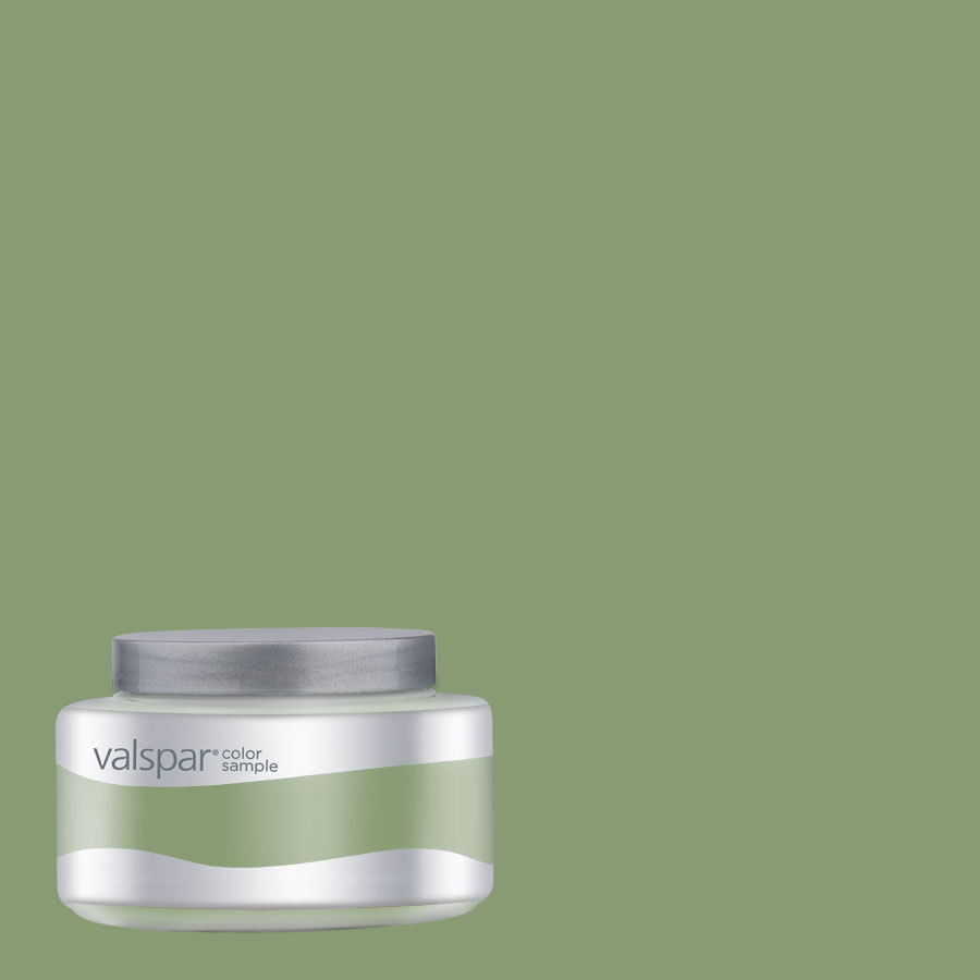 shop valspar 8 oz paint sample color of money at