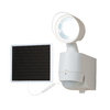 All-Pro 180-Degree White Solar Powered LED Motion-Activated Flood Light with Timer