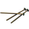 Vantage 12-Pack Exterior Shutter Moss Painted Head Screws