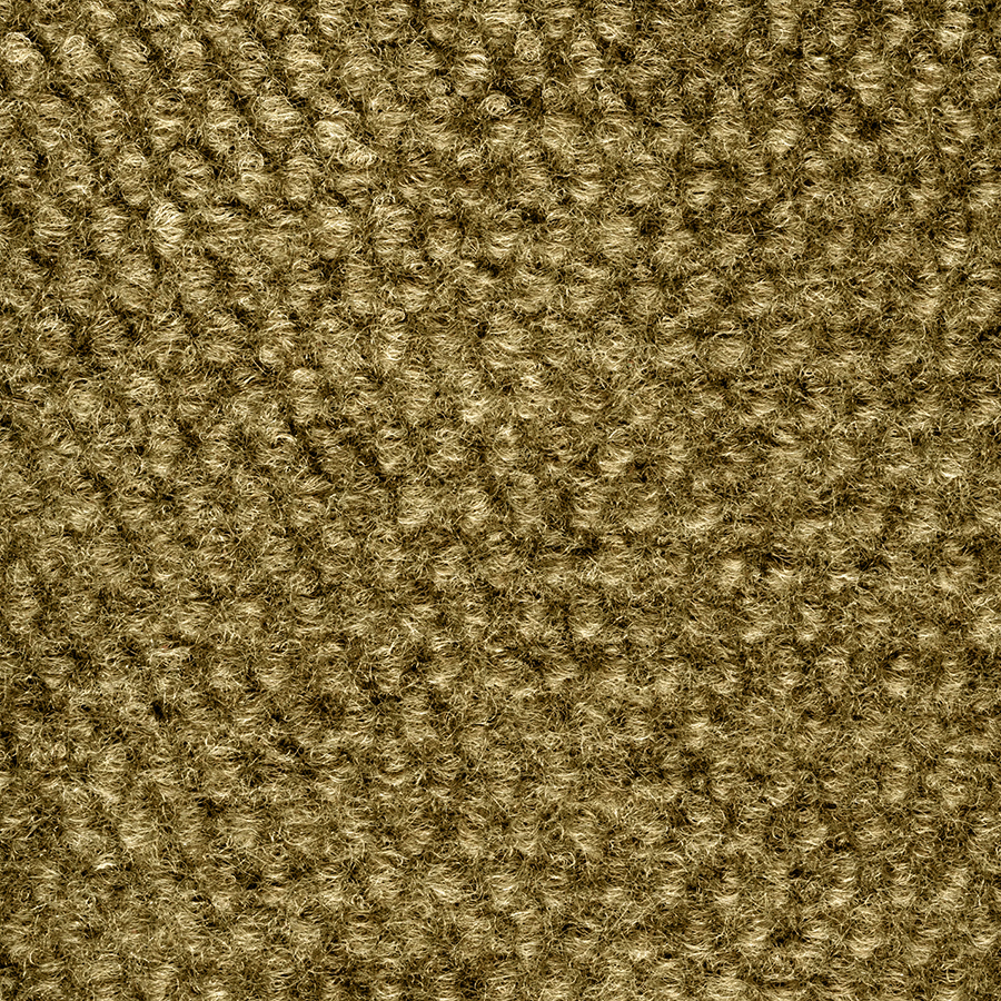 Shop Select Elements Preserve Carpet by Foss Stone Beige ...