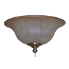 Harbor Breeze 2-Light Brass Ceiling Fan Light Kit with Bowl Shade