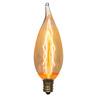 Litex Vintage 2-Pack 40-Watt Candelabra Base (E-12) Warm White Dimmable Outdoor Decorative Incandescent Light Bulb