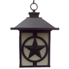 Portfolio 13.99-in Matte Black Outdoor Pendant Light