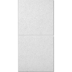 USG Ceilings Ceiling Tile (Actual: 47.75-in x 23.75-in)