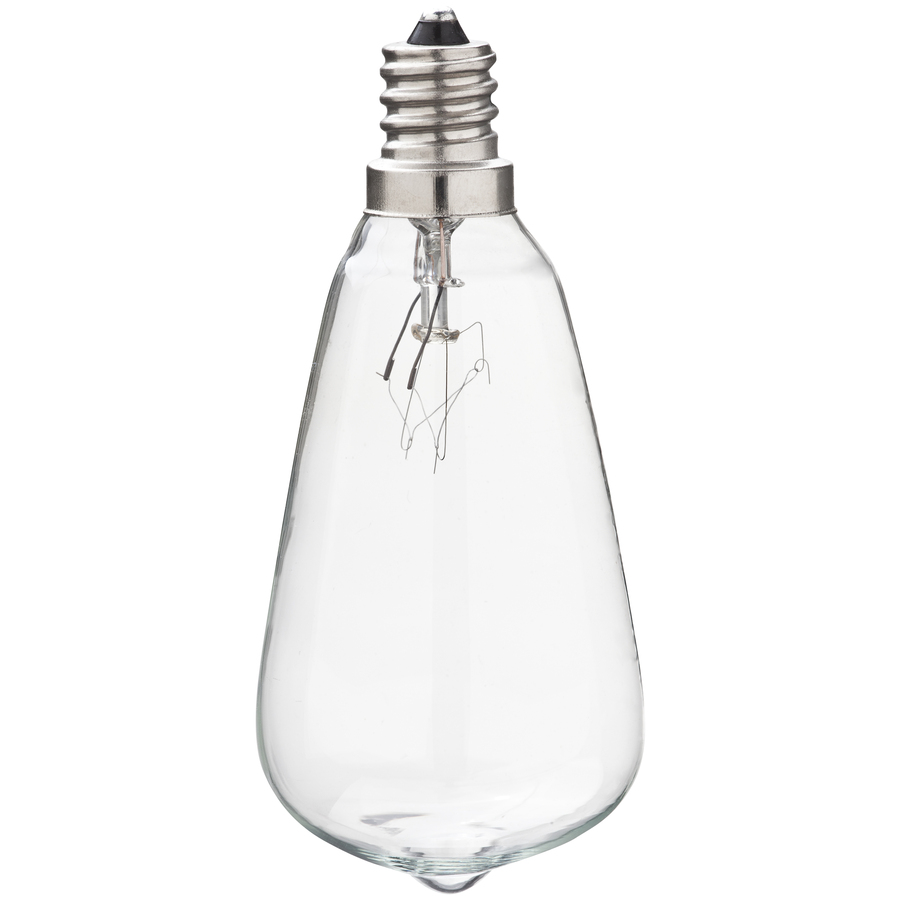 Shop Gemmy Indoor/Outdoor Clear Incandescent Edison String Light Bulbs at Lowes.com