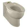 KOHLER Anglesey Sandbar Elongated Toilet Bowl