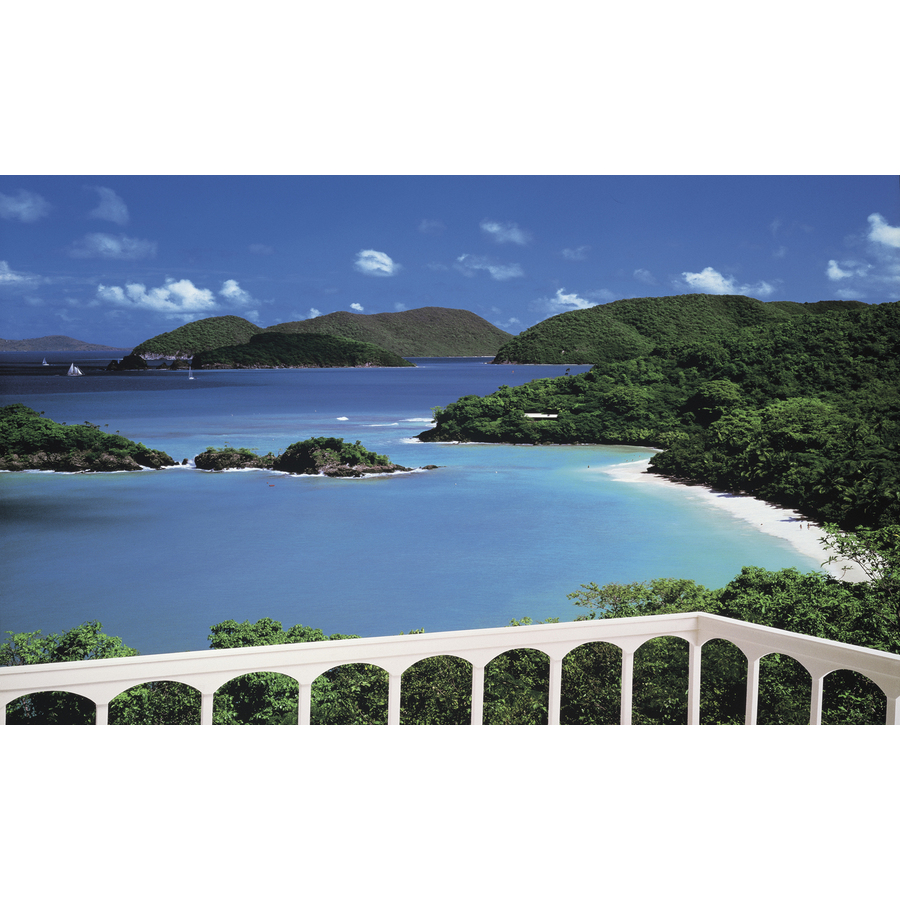 Shop environmental graphics cinnamon bay wall mural at for Environmental graphics wall mural