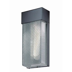 Lite Source 10.25-in H Black Wall-Mounted Lamp with Plastic Shade