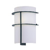 Lite Source 11-in H Black Wall-Mounted Lamp with Glass Shade