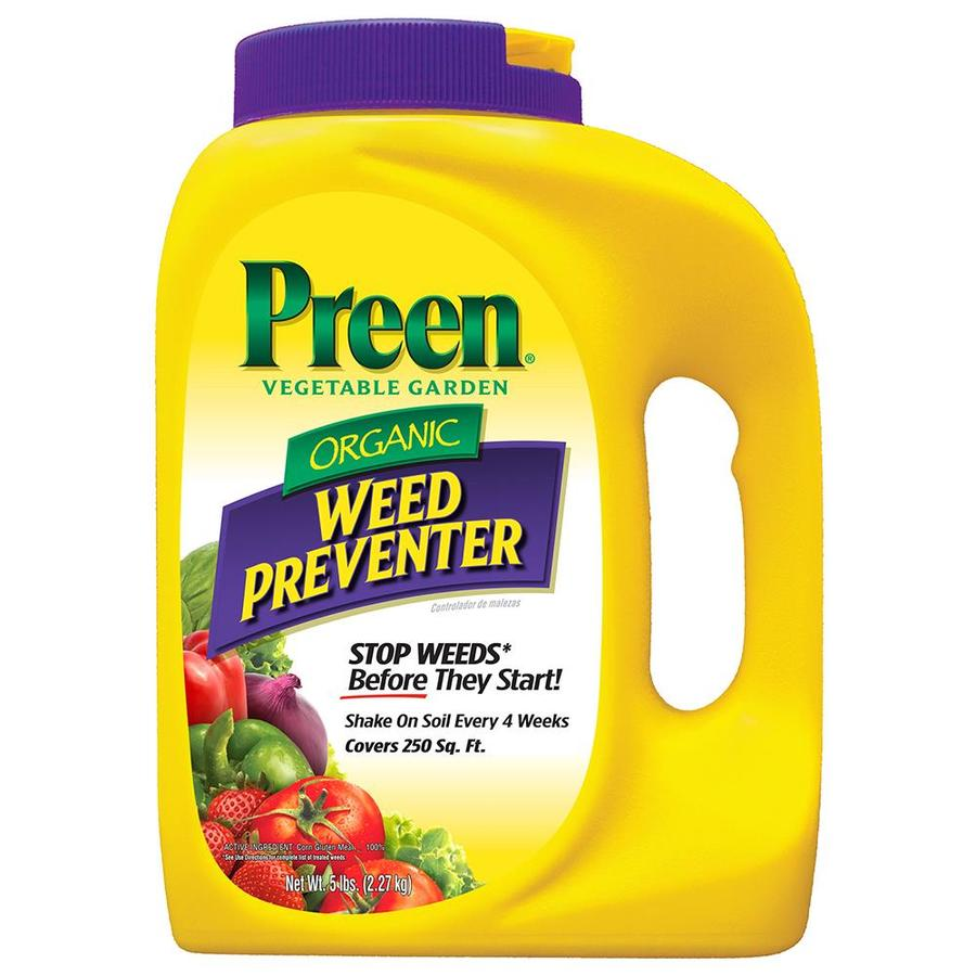 Image Result For Best Time To Apply Weed Killer