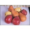 3.25-Gallon 3-n-1 Pear Tree (L10497)