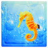 Pittsburgh Corning Expressions Seahorse In Water Art Block Glass Block (Common: 8-in H x 8-in W x 4-in D; Actual: 7.75-in H x 7.75-in W x 3.875-in D)