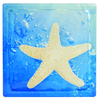 Pittsburgh Corning Expressions Starfish In Water Art Block Glass Block (Common: 8-in H x 8-in W x 4-in D; Actual: 7.75-in H x 7.75-in W x 3.875-in D)