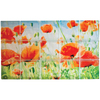 Pittsburgh Corning Expressions Poppies Mural Glass Block (Common: 24-in H x 40-in W x 4-in D; Actual: 23.75-in H x 39.75-in W x 3.875-in D)