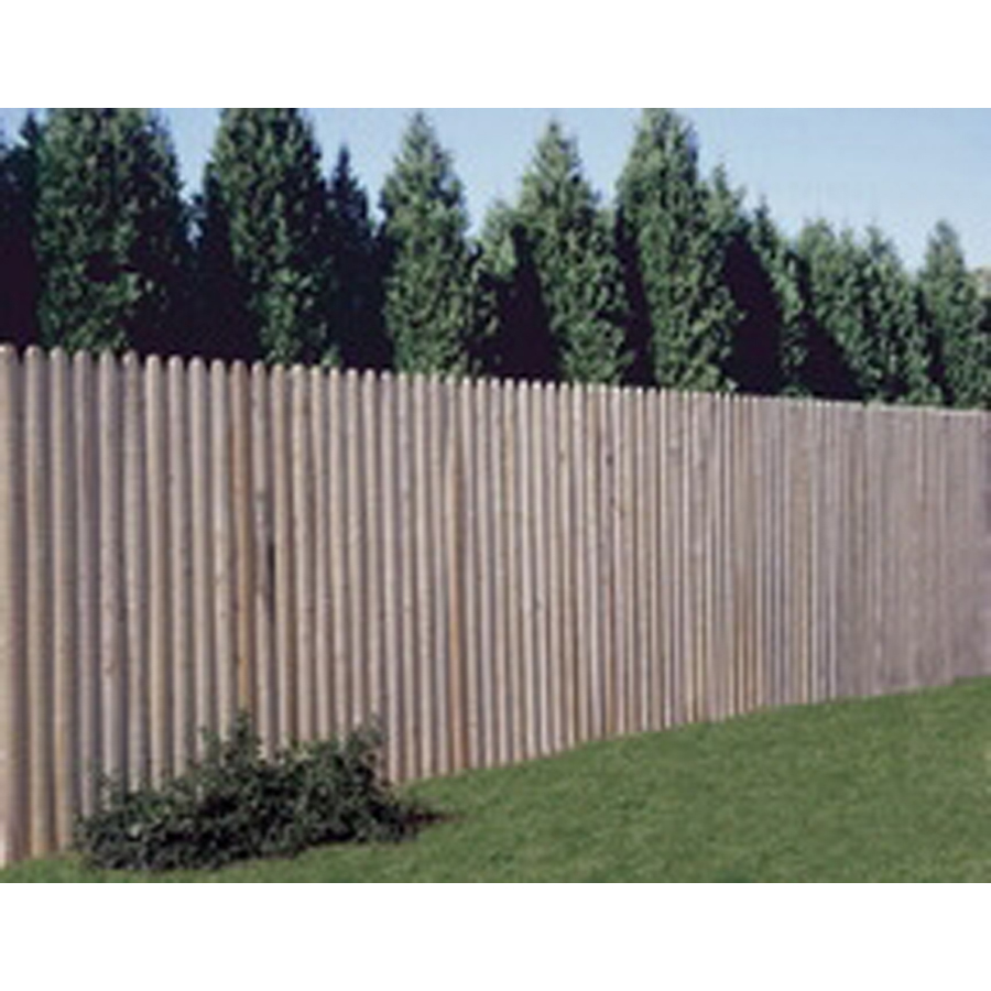 Shop Wood Fencing 6 39 X 8 39 Spruce Stockade At