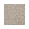 Style Selections 16-in L x 16-in W Riverstone Granite Deck Stone