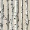 Brewster Wallcovering Beige Strippable Non-Woven Paper Prepasted Classic Wallpaper